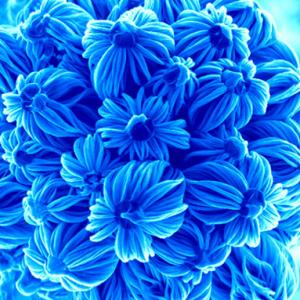 текстиль нанотехнологии