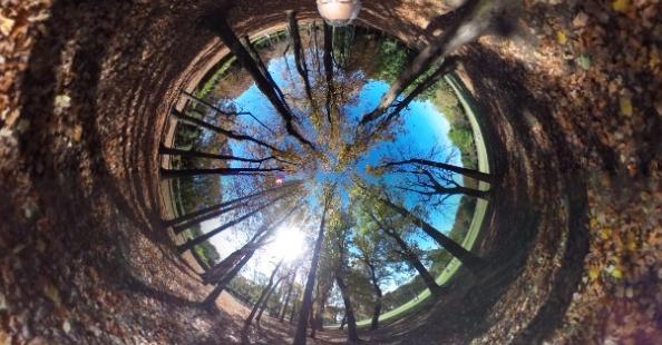 Сферическая камера