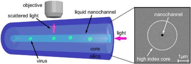 Ученые изобрели новый метод отслеживания движений нано вирусов